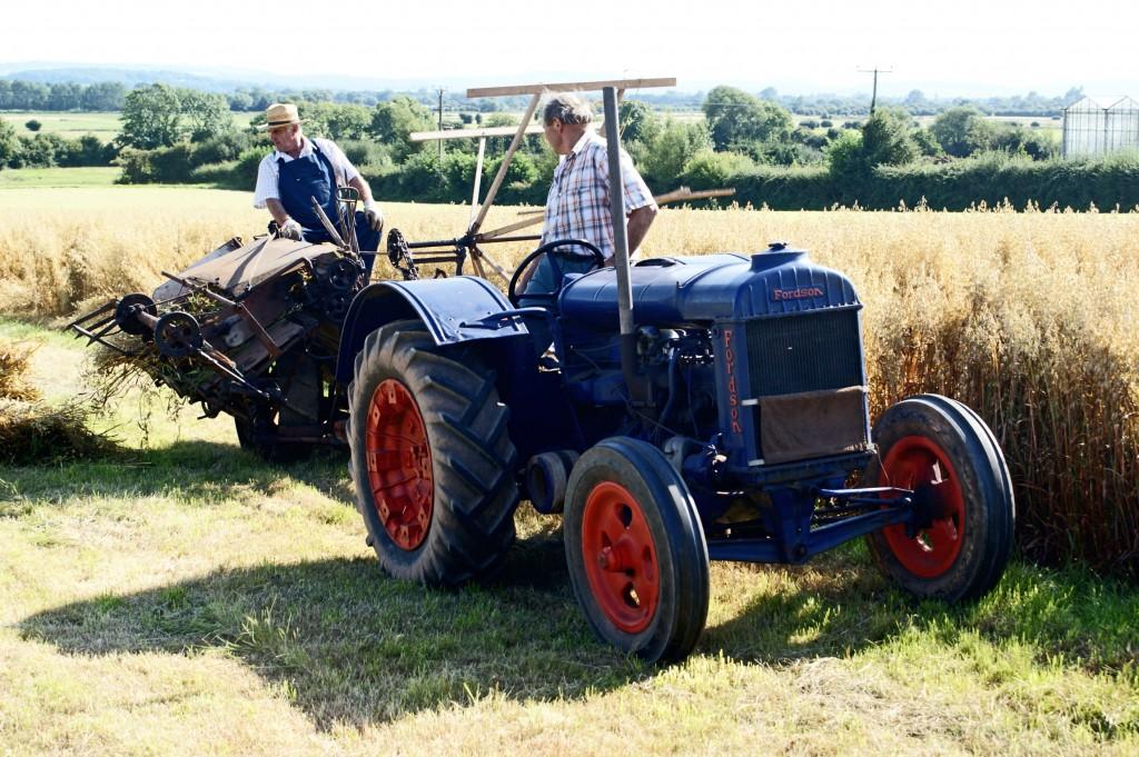 Google Plus Agricoltori