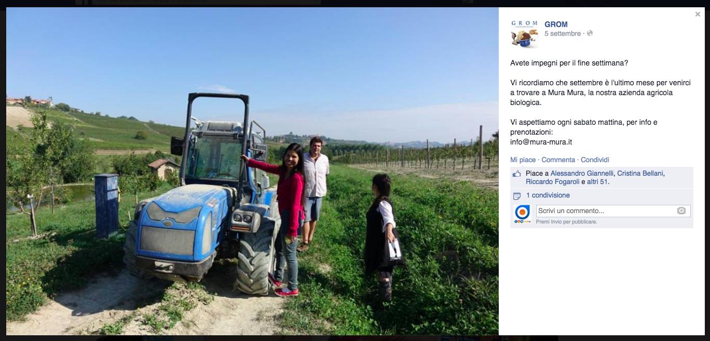azienda_agricola_mura_mura_trattore