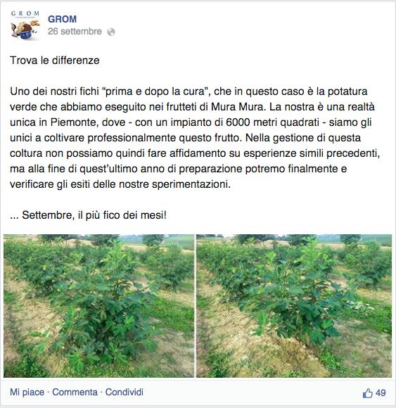 post-azienda-agricola-facebook